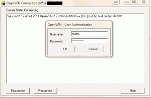 OpenVPN Gui per Windows (1)